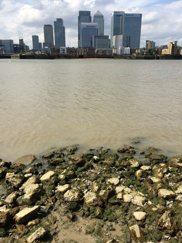 Greenwich foreshore view to Canary Wharf river Thames