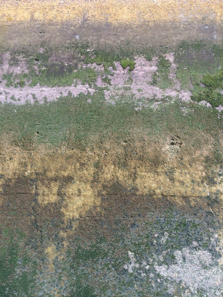 Lovely colours and textures on wall river Thames at North Greenwich