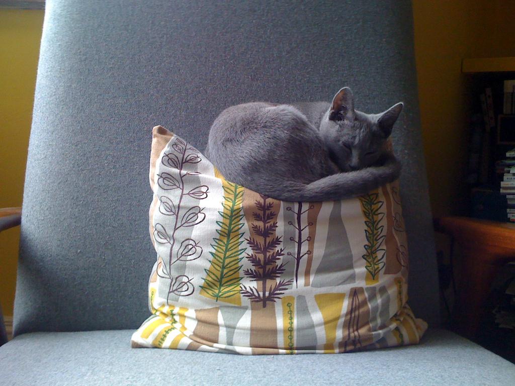 Ivana on cushion Egon Walesch Interior Design
