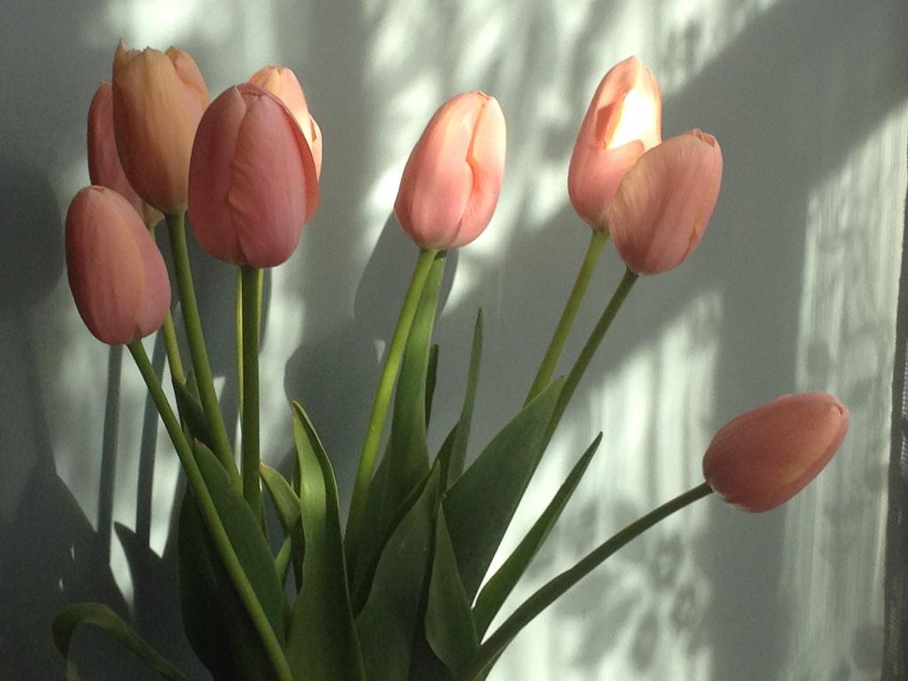 How to use spring flowers in interiors egon design egon design spring flowers tulips hyacinths ranunculus mimosa egon walesch interiors blackheath greenwich mightylinksfo